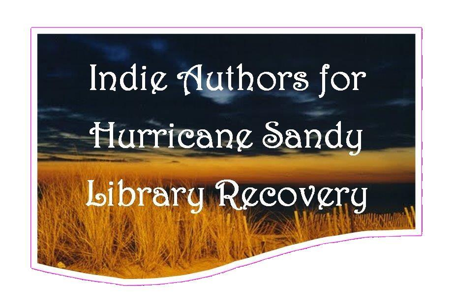Indie Authors for Hurricane Sandy Library Recovery