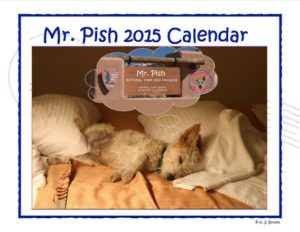 2015 Mr Pish hanging calendar web