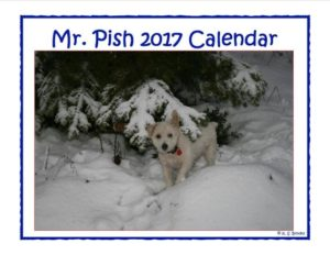 2017 mr pish hanging calendar