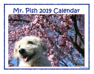 2019 hanging calendar cover WEB