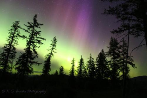 Aurora Borealis May 2017 Chewelah WA