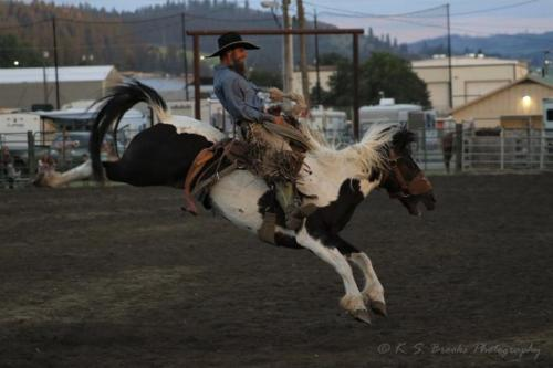 Colville Rodeo 3L0A2312