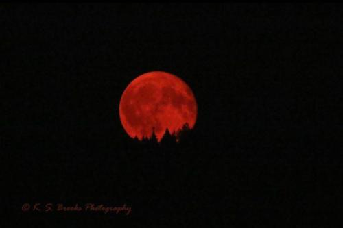 Fire Moon Rising Gifford WA No Filter