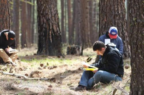 state forestry contest april 2019 colville wa